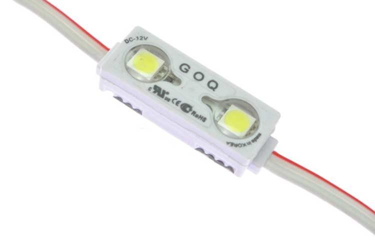 2 LED Module